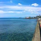 小坪マリーナで撮りました  遠くに江ノ島が見えます