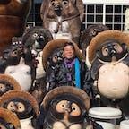 信楽焼 狸の中に納まるサント船長です♪ 同化して居ますね(笑)  #サント船長の写真 #滋賀 #信楽