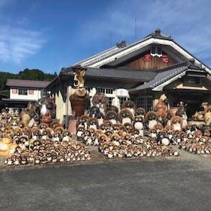 信楽焼  信楽焼「しがらきやき」は、滋賀県甲賀市信楽町を中心に作られる陶器で、昭和51年(1976年)に国から伝統的工芸品の指定を受けています。  使用される土は粘り気があるのが特徴で、耐火力、保温力に優れており、茶碗や花瓶、食器、雛人形、タイルなど個性あふれるものが作られています。  また、適度な吸水性のある信楽焼は植木鉢にも適しています。  #サント船長の写真 #滋賀 #信楽