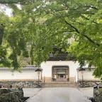 興聖寺  竜宮門です♪  #サント船長の写真 #門巡り