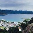 小笠原諸島父島 とにかく海が綺麗、くじらとイルカ見放題