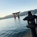 2018.12.31〜2019.01.02    広島・島根⛩① in厳島神社  移動時間長くて尻が激痛だったけど大鳥居には感動が微増