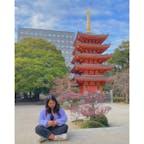 博多駅付近にこんな綺麗な五重塔があることを最近知ったので、行ってみました😊😊