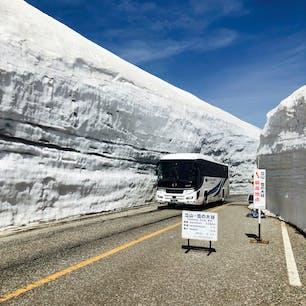 2021.5.15 立山室堂 雪の大谷 例年より壁は低いとのことですが 十分な迫力 天気も最高