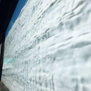 2021.5.15 雪の大谷 50周年 50年前と同じ一車線分だけの雪の壁を再現したらしい。 バスの車窓からこの距離