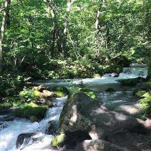 青森 奥入瀬渓流 早朝散歩は気持ち良かったです マイナスイオンたっぷり
