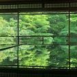 他のSNSで見て不思議に思って行ったら納得☺︎瑠璃光院。とても綺麗でした🌿