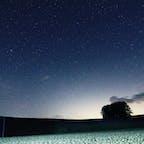 群馬県嬬恋村、カラマツの丘  星空の撮影スポットで人気。 手前は、キャベツ畑😊