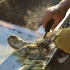 モロベイ(カリフォルニア)  海沿いのジョヴァンニ・フィッシュ・マーケット(Giovanni's Fish Market)の店先で買える、牡蠣の炭焼き。  いろいろな調味料が並べてあるので好きなものをかけて、出来立てをスナック感覚でその場で頂けるのが人気。牡蠣はいつでも別腹。  #morrobay #california #oyster #giovannisfishmarket
