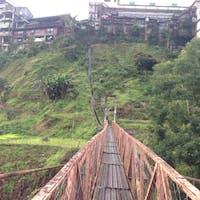 フィリピン バナウエー 棚田の下に架かる吊り橋でかなり揺れます。  #サント船長の写真 #フィリピン