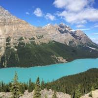 🇨🇦カナダ🇨🇦バンフのペイトーレイク! 綺麗なエメラルドグリーンの湖☺️天候や岩粉の量で色も変わるそう✨ #バンフ  #ペイトーレイク #カナダ