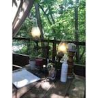 軽井沢 RKガーデン ヴィーガン料理が食べられる植木屋さんです。 木々を眺めながら食事ができます。
