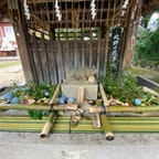 京都花手水 北野天満宮 6月2日から開催でしたが、残念ながら花屋さんの管理が悪く枯れて居ました。 此処は天下の北野天満宮ですよ、お金の有る社寺ですがね、 しかし何度か行きますよ🤗  #サント船長の写真 #花と水の京都 #京都