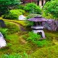 京都 鈴虫寺 本名華厳寺。住職さんの説法つき。話が上手い。