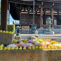 京都花手水 金戒光明寺  しかし、此の花手水を担当する花屋さんは花の入れ替えに大変だね😓  #サント船長の写真 #京都 #花と水の京都