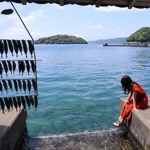 日本のベネツィア伊根の舟屋☀️