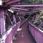 あやとりはし 石川県  あやとり橋(あやとりはし)は、石川県加賀市山中温泉の大聖寺川にかかる橋(人道橋)である。あやとり橋と記載されることが多いが、正式名称はあやとりはしである。  #サント船長の写真 #全国橋巡り #石川県