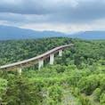 北海道の車で行ける峠の中で最高地点らしい三国峠。峠道といっても北海道らしく道幅が広くて走りやすく、しっかり景色も楽しみながら走れる気持ちの良いドライブスポットでした。