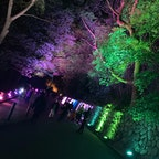 夜桜🌠🌸  ◎須磨浦公園◎