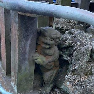 西叶神社の狛犬。 柱にしがみついててかわいいです。