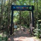 千葉県誉田にあるターザニア。 スリル満点で、自然も満喫できました。