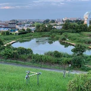 松戸市にある ハートの形の池♥️