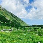 ミヤマキンポウゲ、ミヤマクロユリ、コバイケイソウ、ミヤマリンドウ…🌼 高山植物に詳しくなりました! 下山後のすずらん牛乳ソフトがご馳走☺️  #千畳敷カール