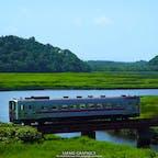 北海道一長い鉄路JR根室本線(滝川-根室)のうち、釧路と根室を結ぶ北海道有数の絶景区間を 「花咲線」と呼んでいます。車窓から広がる景色は湿原や牧場、太平洋といったのどかで北海道らしいものばかり。エゾシカ、キタキツネ、鶴をはじめとする野鳥などとの遭遇も珍しくない大自然が感じられる路線です!#北海道 #根室 #釧路 #花咲線