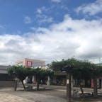 秋田 道の駅東由利