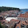 スロヴェニアのピラン 上の旧市街からタルティーニ広場を見る