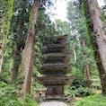 羽黒山の五重塔。ここまでは隋神門から歩いてすぐだけど、本殿までは石段2400段以上のハードな道のりです🚶♀️