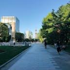 札幌 大通公園🗼
