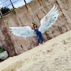 フォトジェニックしてきたw  映とるかはわからんけども…w  #福岡 #糸島 #フォトジェニック #天使の羽 #夏の思い出