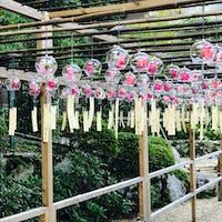 正寿院 風鈴寺とも言われる。 夏には2000個もの風鈴で涼を感じられる。  この日は無風に近く残念でした😩