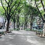 2021年9月16日 杜の都、仙台。