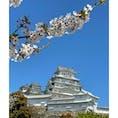 思い出の姫路城