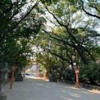 福岡市 住吉神社