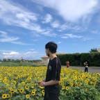 2021年7月30日 横須賀の長井海の手公園ソレイユの丘🌻