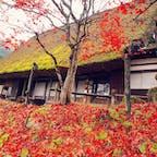 2017.11.15 🏕:飛騨の里(岐阜県高山市) 📷:OLYMPUS PEN Lite E-PL7