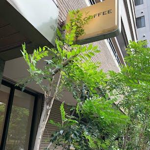 REC COFFEE 県庁東店 福岡県庁のとなりにある。 日曜日に行ったが、休日をゆったり静かに過ごす人であふれていた。
