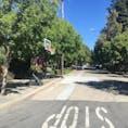 Old Palo Alto住宅街  Palo AltoとMountain Viewの間はCalTrainの両側に広大な高級住宅地が広がっています。 そこには路上にこんなものまで!?  自転車を借りて、のんびりアメリカの住宅街を吹き抜けると、現地の生活が模擬体験できます✨  ゴールはいくつもあるので、探してみてはいかが?
