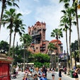 フロリダ・ディズニーワールドの 内のパークの1つ「ディズニーハリウッドスタジオ」。タワー・オブ・テラーやトイストーリーマニアはあるが、類似の東京ディズニーシーと比べると小粒なパークの印象。  #ディズニーワールド #ディズニー #フロリダ