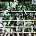 川越氷川神社の縁結び風鈴!  現地は暑かったけど風鈴の音を聴いたら気持ち涼しくなった気がする。とにかく癒された( ^ω^ )◎  2018.8/13