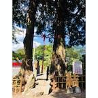 2018.8.26 佐賀県武雄市 武雄神社