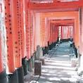 伏見稲荷大社 千本鳥居 京都 [2018 Feb.]  #kyoto #Japan #tourism