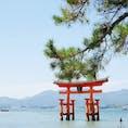 広島県:宮島  いいお天気に恵まれました✨✨