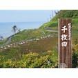 【石川県】 世界農業遺産に認定されている 農業の聖地「白米千枚田」です😌