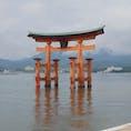広島旅行 宮島 厳島神社 ずっと行ってみたいと思っていた厳島神社に行けて念願が叶いました✨