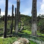 香港のゴンドラ、ゴンピン360で登った場所を散歩してたら発見しました。  ただ、猛暑で汗ダラダラでした