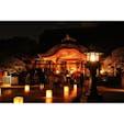 福岡県 〜太宰府天満宮〜 学問の神様 菅原道真公が 祀られています。 この日は「太宰府古都の光」という イベントで行灯が道に 並べられていました。